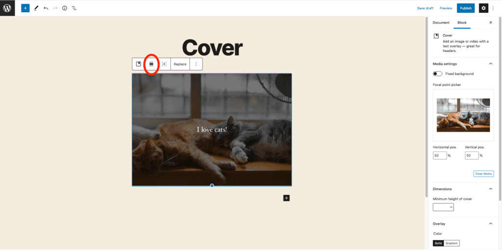 This image highlights where to go to change the formatting of the cover image, the button for this is left of center underneath the title and directly above the  image.