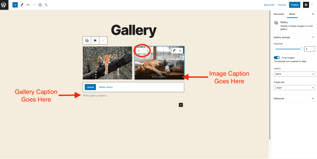 This image shows an example of a gallery. The example images are of a tiger taking a nap next to an image of three cats napping in front of a window. This image also highlights how to switch the image placements and where to add gallery and individual image captions.